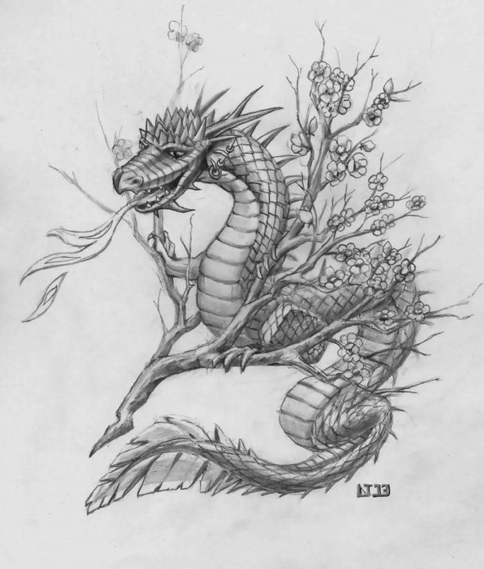Дракон на ветке сакуры