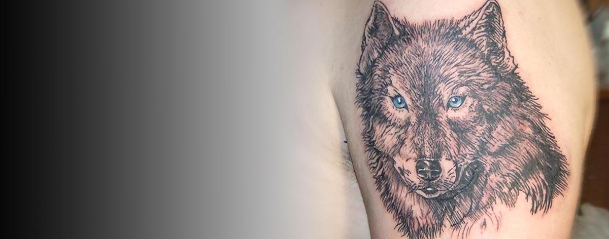 волк шапка